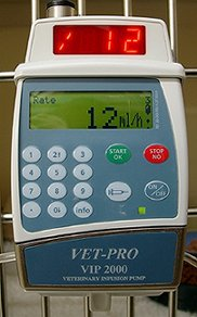 Infusion pump in use treating a sick cat in hospital